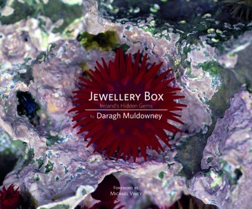 To print Jewellery Box Hardback Book