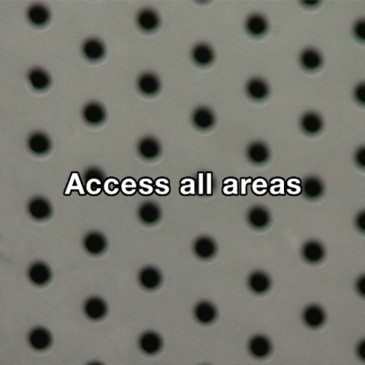 Dublin Dance Festival: Access all areas