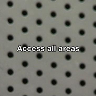 Dublin Dance Festival: Access all areas