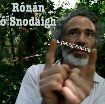 Rónán ó Snodaigh - A Perspective
